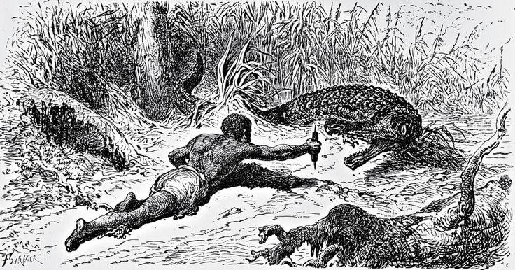 Resultado de imagen para cazador de caimanes magdalena