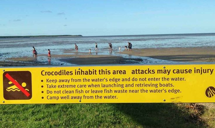 Funny crocodile warning sign spotted at the #Cairns Esplanade in Far North #Queensland, #Australia. Just some of the Things To Do In Cairns! #travel #travelblogger #travelblog