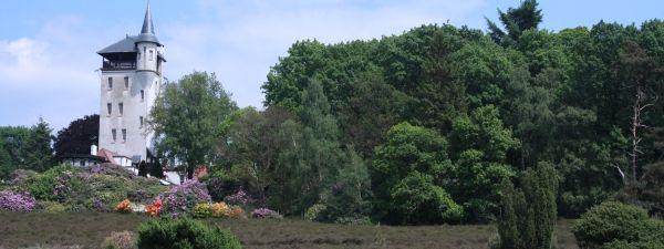 sallandse heuvelrug - Palthe