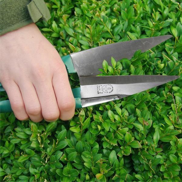 BURGON & BALL Topiary Trimming Shears - Large