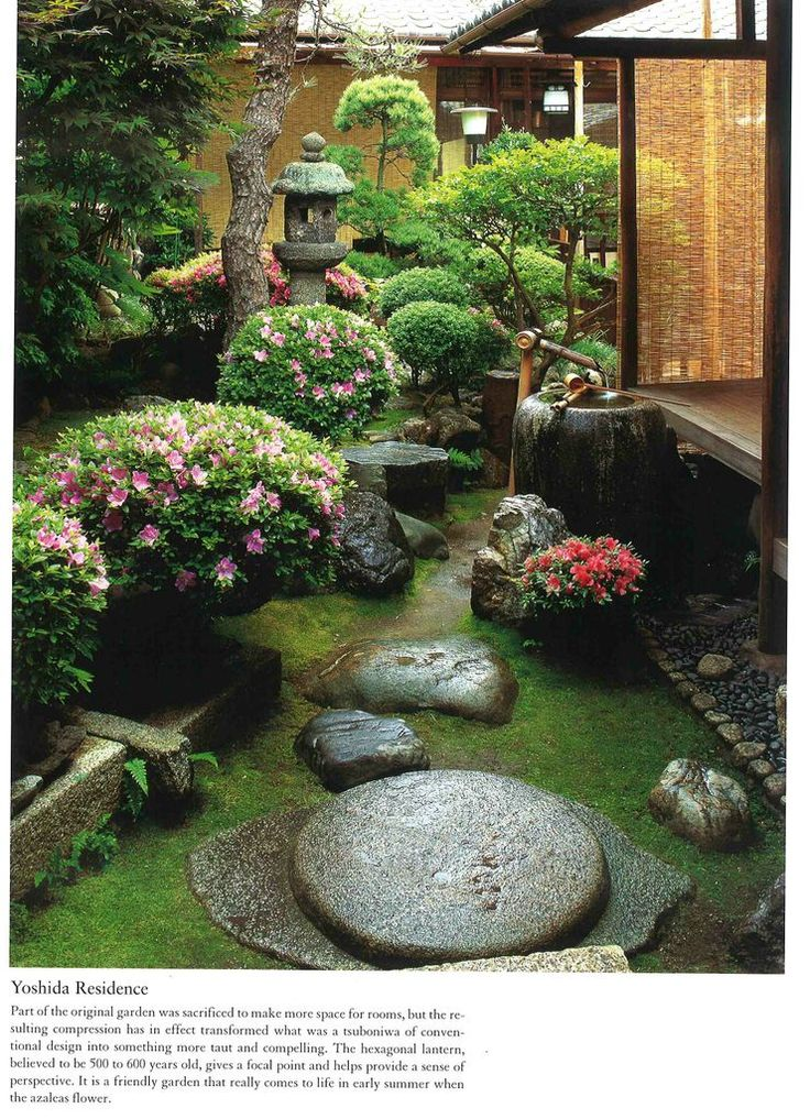 Japanese garden -Would be nice to look out bedroom/bathroom windows and see  nice zen garden.