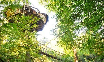 Les cabanes de la belle à Magne : Nuit en Cabane, Entrée La Vallée des Singes: #MAGNE 69.00€ au lieu de 119.00€ (42% de réduction)