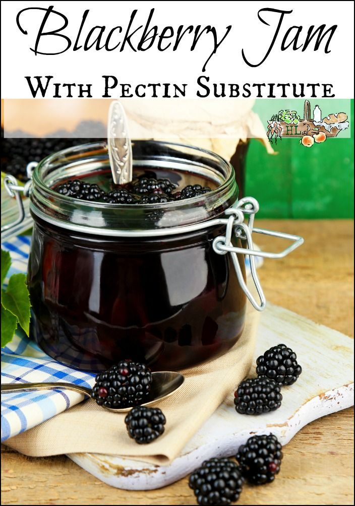 Blackberry Jam with Shredded Apple (as a pectin substitute)