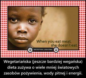 Wegetariańska (jeszcze bardziej wegańska) dieta zużywa o wiele mniej światowych zasobów pożywienia