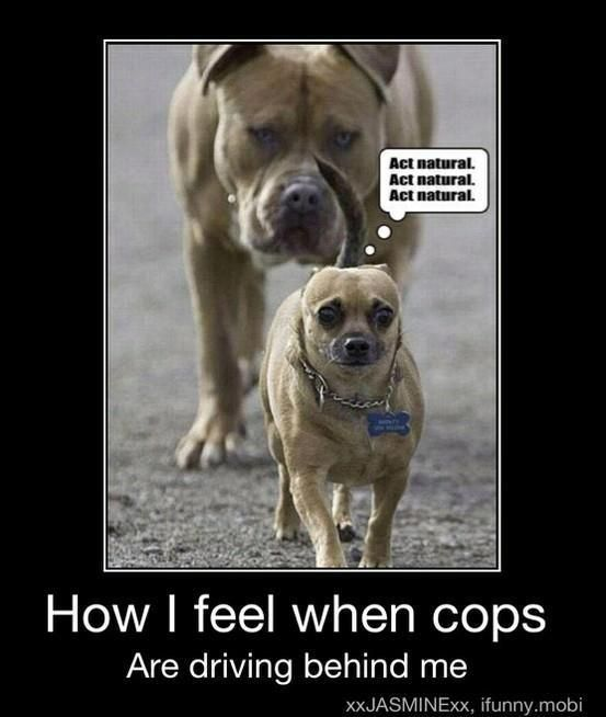 Does anybody else feel super weird walking by cops even though you haven't done anything