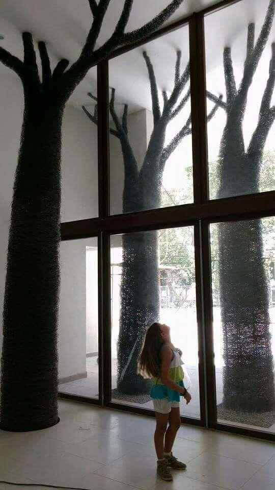 Bosque Candelaria