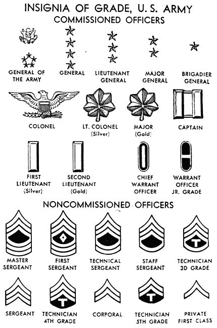 army ranks   All the insignas of United States/Canadian Military