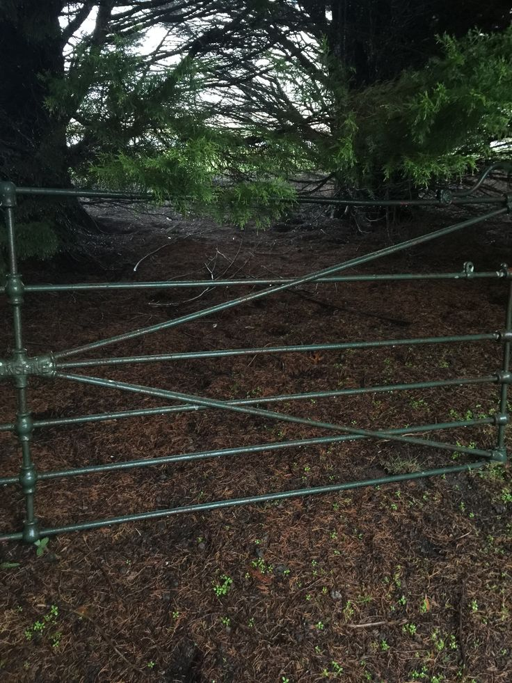 An old sunshine gate