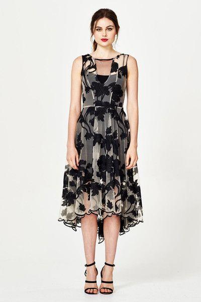 Trelise Cooper Dress Who's Back Dress at Wendys Boutique