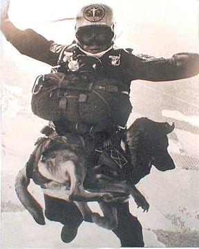 Il blog dei militari, esercito, marina, aeronautica, militare: A Pisco, in Perù, vengono preparate ed impiegate le unità cinofile aviolanciate: cani soldato (e quelli italiani sono i meglio addestrati) che seguono i padroni anche col paracadute.
