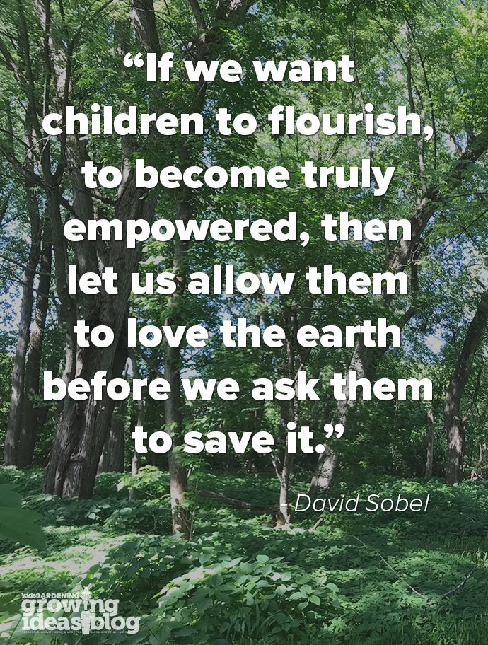 Learning To Love The Earth Love Nature Quotes Earth Quotes Nature Quotes