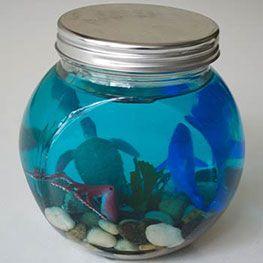 Glass Jar Ocean Terrarium