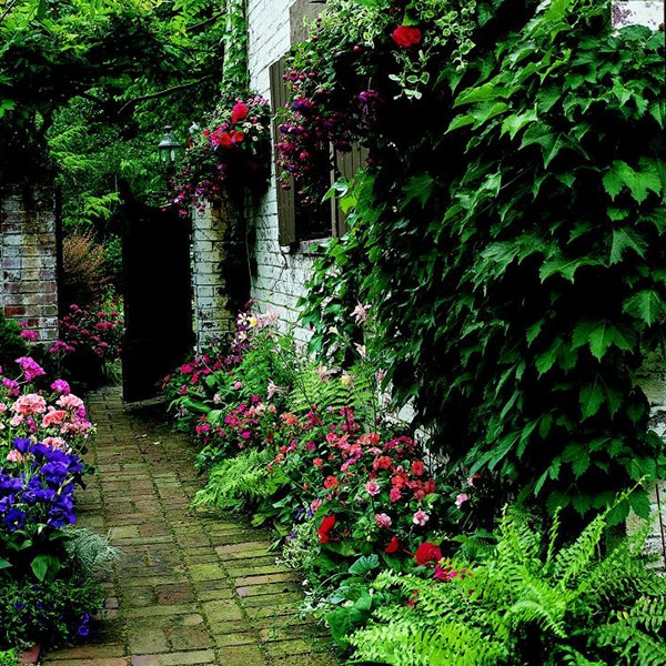Garden Plans For Walkway Using Shade Loving Perennials And Annuals.