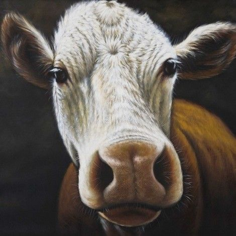 KARE Prague - Oil Painting Cow 100x120