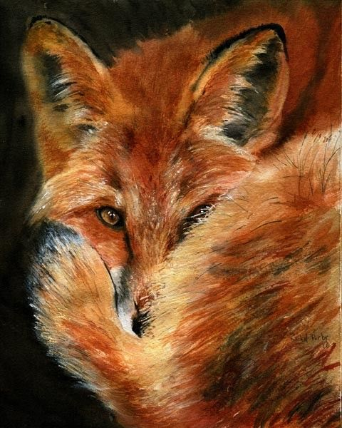 Hey, I found this really awesome Etsy listing at https://www.etsy.com/listing/69885222/red-fox-portrait-art-print-reproduction