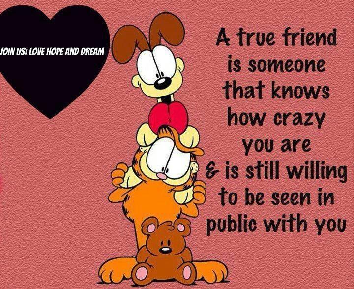 Pinterest Crazy Quotes: Crazy Friends