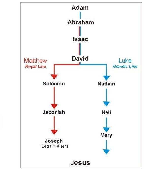 genealogy | earlychristianfellowship.org » The Genealogy of Jesus Christ