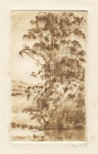 Bohuslav Reynek Olše u rybníka / Alder at the Lake suchá jehla / dry point 11,8 x 7 cm, 1937, opus G 111