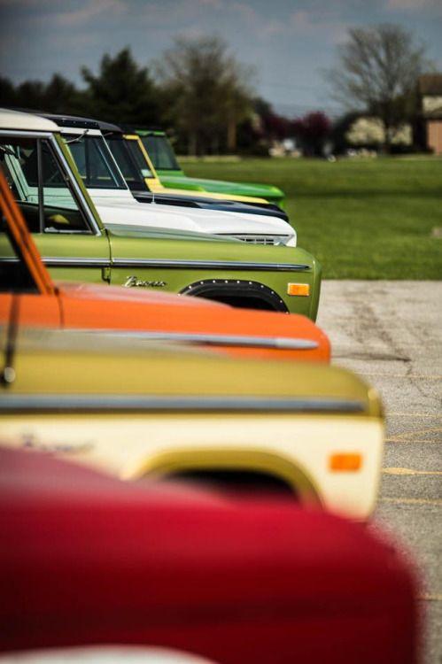 Vintage Bronco Line Up