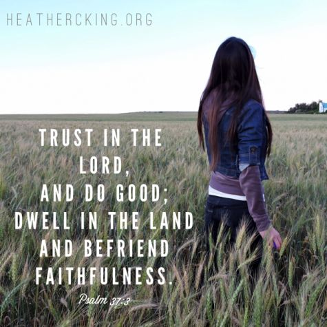 """Trust Him and do good. That's what it says. It seems I spend a whole lot of time and effort trying to """"do perfect"""" or """"do all."""" But that's not what God asks of any of us. God doesn't expect perfection because He knows we're imperfect. He simply asks us to trust Him, """"do good"""" and keep doing good. Choose the right things. Show up day after day. Be faithful."""