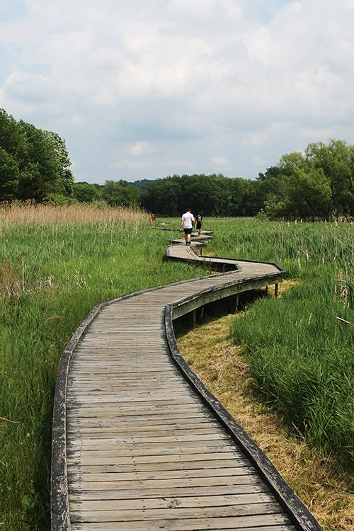 Best Hiking Trails for Family in NJ - Grab your sneakers and head to the trails for a fun day outdoors!