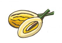 Melonenbirne - Pepino