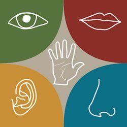 Психологические тесты на тему личности и индивидуальности человека.