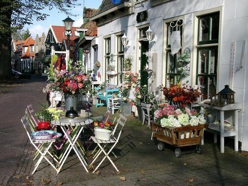 Flowers op Texel