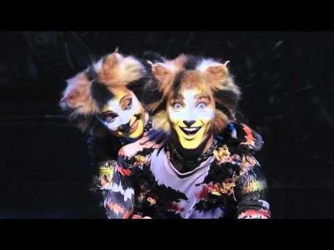 Bande annonce de la comédie musicale Cats au Théâtre Mogador à Paris jusqu'en juillet 2016.