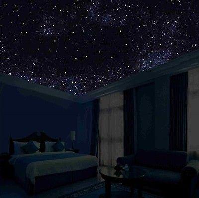 Glow in the Dark Night Sky Mural Stars Constellations Milky Way 5 FT Canvas