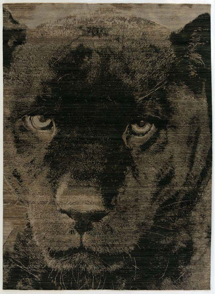 Panther – Luke Irwin