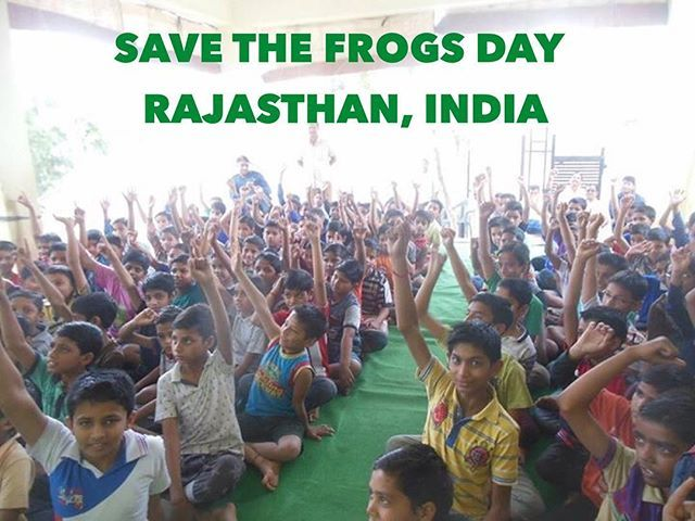 Save The Frogs Day in Rajasthan, India www.savethefrogs.com/day . . . .  #rajasthan #rajasthani #india #indian #nature #education #students #kids #teachers #education #awareness #environment