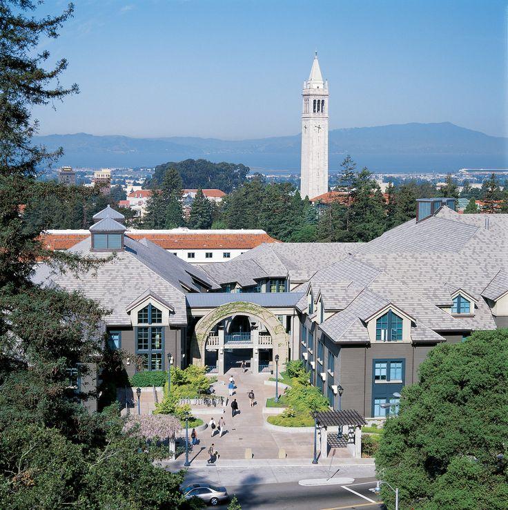 UC Berkeley Haas Essay Analysis, 2015–2016