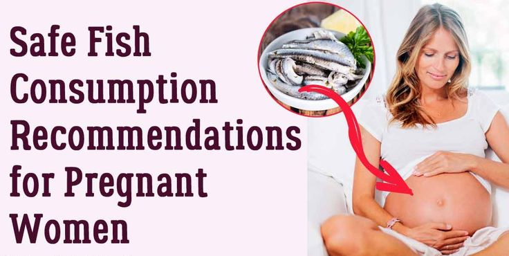 Are you dreading eating fish during your #pregnancy? Well, don't be as not all type of fishes has high level of mercury. Fishes are a great source of lean protein, so enjoy a bite!