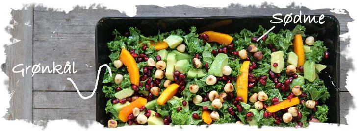 SalatTøsen » Grønkålssalat m. honningstegt hokkaido, avokado og granatæble