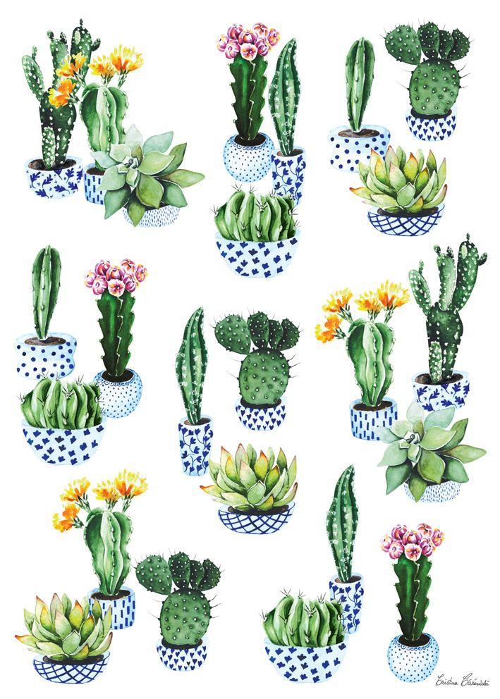 Cactus poster - by Cristina Caramida