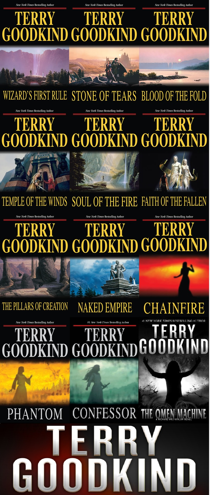 The Sword of Truth series by  Terry Goodkind.  I love these books, the character development, the continuity and excitement of the plotline, the passion and descriptive talent of a master writer, Terry Goodkind.  Richard, Kahlan, Cara, Zedd, Shota, Darken Rahl, Berdine, Nikki, Jagang, Ulicia and so many more great characters.