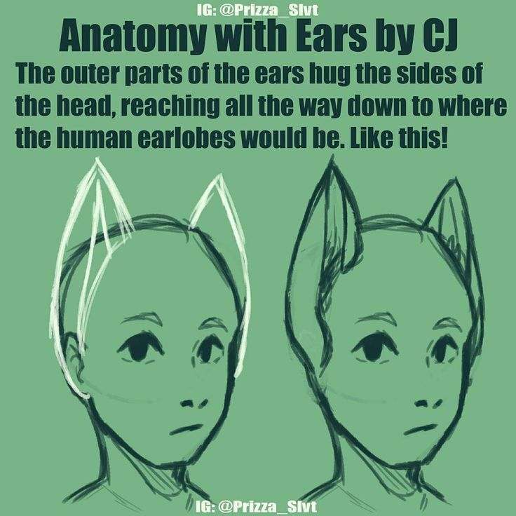 14 Exhilarating Pencil Drawing Supplies Techniques Ideas Anime Cat Ears Animal Drawings Drawing People