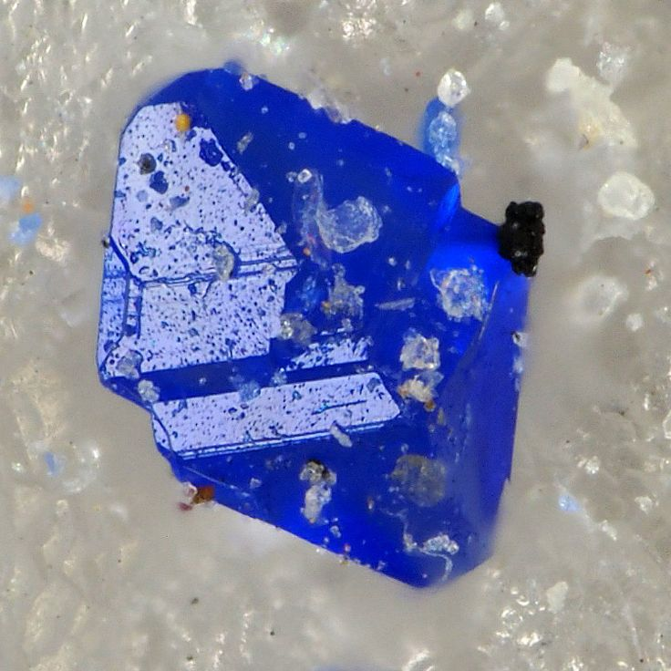 This crystal is tiny, a mm only, but it exhibits the satisfying deep blue colour only copper is capable to produce. This is Callaghanite, copper magnesium carbonate, found at Gabbs, Nye County, Nevada, USA