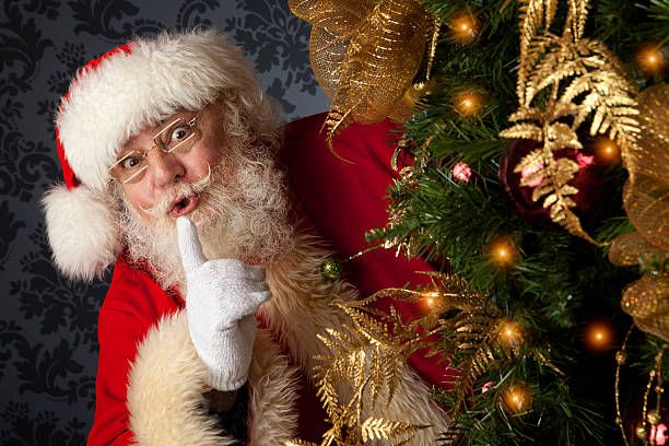 Image result for santa Professional pictures