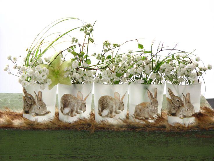 #wielkanoc #zajaczek #tajemniczyogrod #zakopane