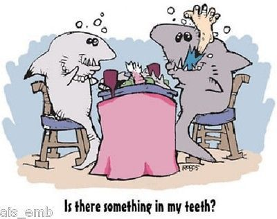 Shark Humor T SHIRT  Item no. 250d by AlwaysInStitchesCo on Etsy