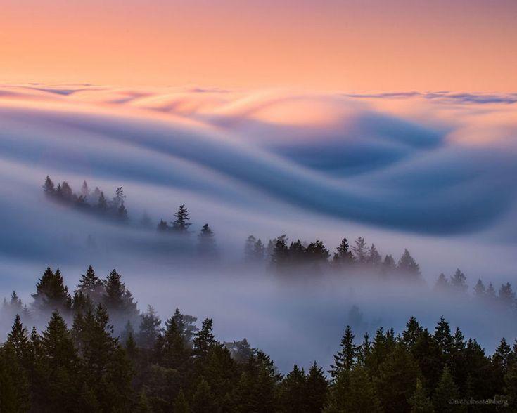 As oníricas ondas de nevoeiro registradas pelo fotógrafo Nick Steinberg 02