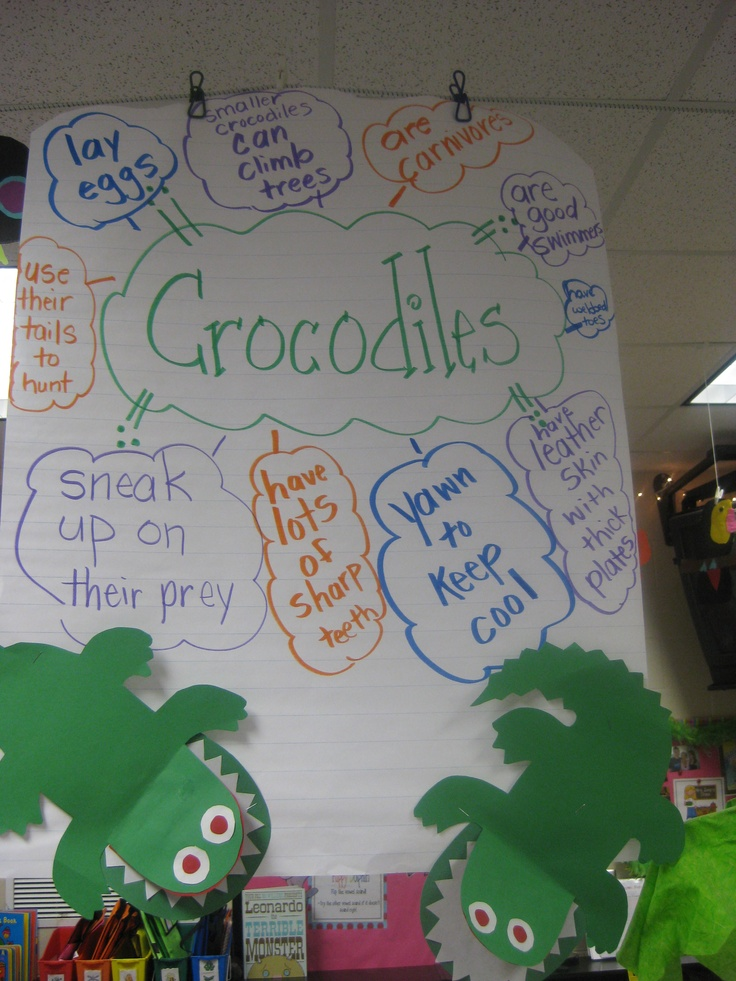 .facts written in alligator mouths. This link also has a great paper toucan for kids to make