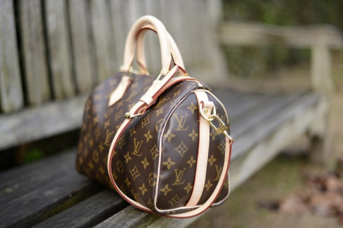 Louis Vuitton Speedy B 25. WANT