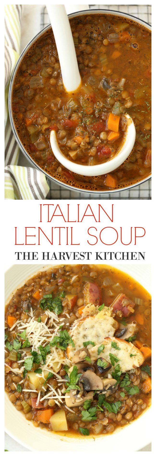 Rich hearty Italian Lentil Soup seasoned with basil, oregano, dill and richly…