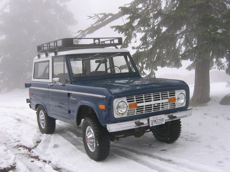 Nice rack on a blue uncut bronco in the snow.