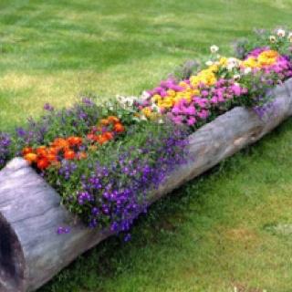 Unique and rustic garden idea