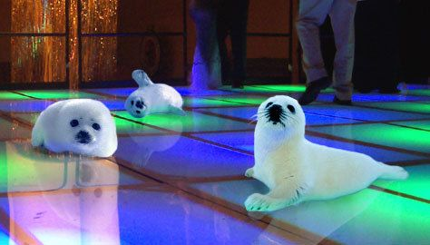 """""""Stop clubbing, baby seals!"""" Once again, punctuation makes all the difference."""