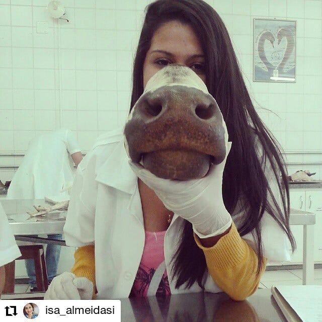 #repost @isa_almeidasi    Anato. #medvetlife #veterinaryclinic #medicinaveterin #veterinarian  #veterinarysurgeon #vetlife #veterinaryassistant #hospitalveterin #veterinarytechnician #vettech #veterinarydoctor #rafavet #veterinaria #veterinary #tiogbo #tierarzt #vétérinaire #ветеринария #medicinaveterinaria #medvet #veterinarski #veterinè #וטרינרי  RAFA VET CONTA COM UMA BIBLIOTECA VIRTUAL DE ARQUIVOS VETERINÁRIOS GRATUITOS PELO WHATSAPP 038 9 99097972